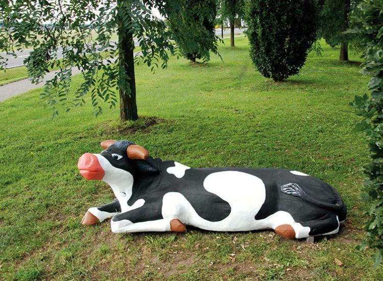 Vaca tumbada